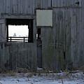 Open Farm Winter by Dylan Punke