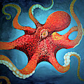 Optical Octopus by Joshua Hendry