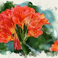 Orange Burst by Susan Warren