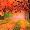 Orange Fall by Jas Stem