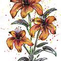 Orange Flowers by ZeichenbloQ