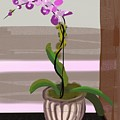 Orchid by Marvin Campbell