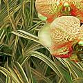 Orchids In The Grass by Lynda Lehmann
