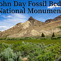 Oregon - John Day Fossil Beds National Monument Sheep Rock 1 by G Matthew Laughton