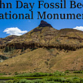 Oregon - John Day Fossil Beds National Monument Sheep Rock 2 by G Matthew Laughton