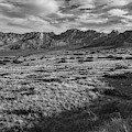 Organ Mountains Black And White Second Iteration  by Chance Kafka