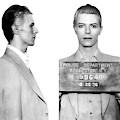 Original David Bowie Mugshot 1976 by Doc Braham