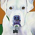 Oscar I Am Deaf by Pat Saunders-White