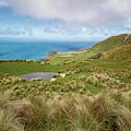 Otago Peninsula New Zealand Hike by Joan Carroll