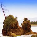Outlying Tillamook Bay by Kandy Hurley