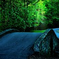 Over The Bridge And Through The Woods by Flying Z Photography by Zayne Diamond