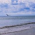 Overcast Beach by Jeremy Guerin