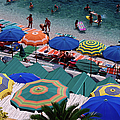 Overhead Of Umbrellas At Private by Dallas  Stribley