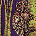 Owl by Amy E Fraser