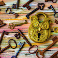 Owl Lock And Old Keys by Garry Gay