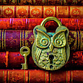 Owl Lock On Old Antique Books by Garry Gay