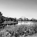 Oxbow Bend, Grand Teton National Park In Black And White by Kay Brewer