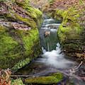 Ozark Mountain Stream - Northwest Arkansas by Gregory Ballos