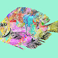 Pacific Gyre Flotsam Flounder by Dominic Piperata