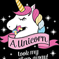 Pacifier Fairy Gift Idea Unicorn Took My Paci Away by Festivalshirt
