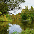 Painted Fall On The Back Pond by Skip Willits