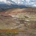 Painted Hills Spring by Matthew Irvin