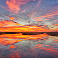 Palm Beach County Sunset by Juergen Roth