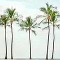 Palm Trees On The Beach by Ramona Murdock