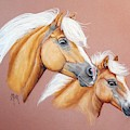 Palomino Pair by Mary Mint