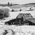 Palouse Barn Ir 9305 by Bob Neiman