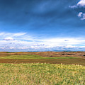 Palouse Hills In Spring by David Patterson