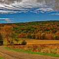 Paltz Point Mohonk Dirt Road by Susan Candelario