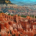 Panorama Bryce Canyon  by Chuck Kuhn