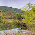 Panorama Of The Pond At Can Creek - Lost Maples State Natural Area - Vanderpool Texas Hill Country by Silvio Ligutti
