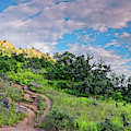 Panorama Of Turkey Peak And Hiking Trails At Enchanted Rock - Gillespie County Texas Hill Country by Silvio Ligutti