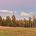 Panorama Of Twilight Meadow At Valles Caldera - Los Alamos New Mexico Land Of Enchantment by Silvio Ligutti