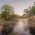Panorama - Sunrise Impending - Landa Park Comal Springs New Braunfels - Texas Hill Country by Silvio Ligutti