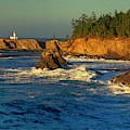 Panoramic Cape Arago Lighthouose Central Oregon Coast by Dave Welling