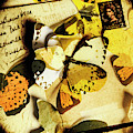 Paper Wings And Inked Out Notes by Jorgo Photography - Wall Art Gallery