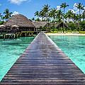 Rangiroa, Tuamotu - Paradise On Earth by Lyl Dil Creations