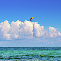 Parasailing by Alison Frank