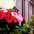 Parisian Roses by Brian Jannsen