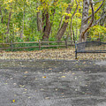 Park Bench @ Sharon Woods by Jeremy Lankford