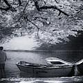 Park Boats by Edgar Laureano