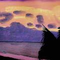 Pastel Palm Tree Sunrise by D Hackett