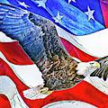 Patriotism by Max Huber