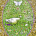 Pea Hen With Egg And Butterfly by Lise Winne