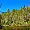 Peace Along The River by Allen Nice-Webb