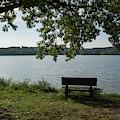 Peaceful Bench by Jennifer Wick