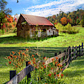 Peaceful Country Morning by Debra and Dave Vanderlaan